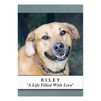Dog Memorial Card Teal - Don't Grieve Poem Large Business Cards (Pack Of 100)