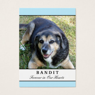 Dog Memorial Cards - Blue Modern with Photo