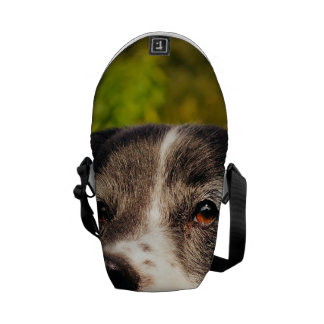 Dog Courier Bags