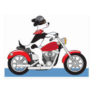 Dog Motorcycle Postcard