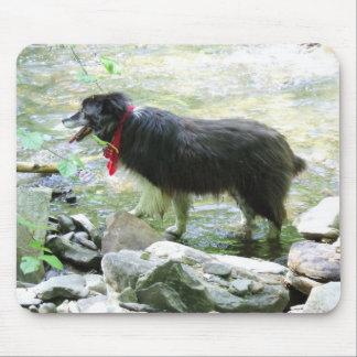 Dog Mousepad (Rex)
