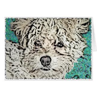 DOG: Multi-Poo Pup Looking RIght at Ya Cards