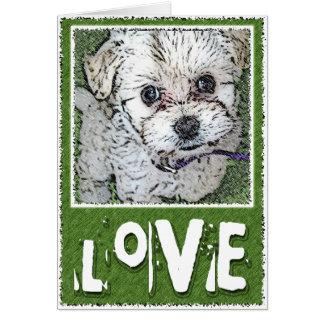 DOG: Multi-Poo Puppy Kooky Eyes Love Cards
