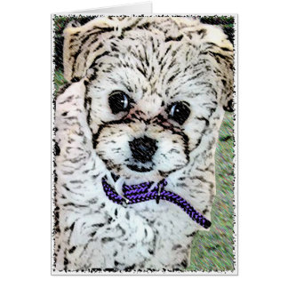 DOG: Multi-Poo Puppy Miss Kooky Eyes Card