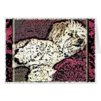 Dog: Multi-Poo Taking a Dog Nap Cards