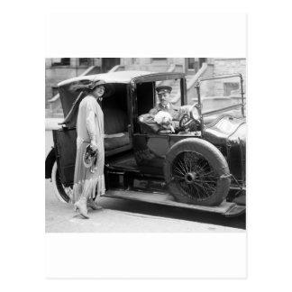 Dog Nanny and Chauffeur, 1920s Postcard