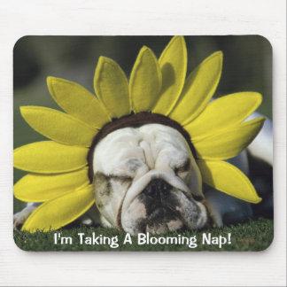 Dog Napping! Mouse Pad