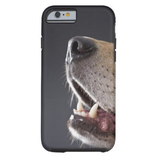 Dog nose and mouth, close-up tough iPhone 6 case