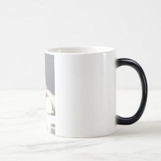 dog nose magic mug