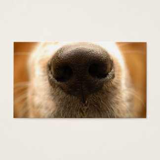 dog nose veterinary business card