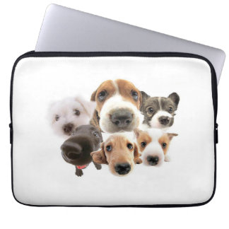 Dog Noses Laptop Cover