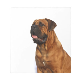 Dog Memo Note Pads