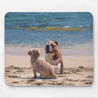 Dog of Sandy Beach Mouse Pad
