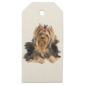 Dog of show class wooden gift tags