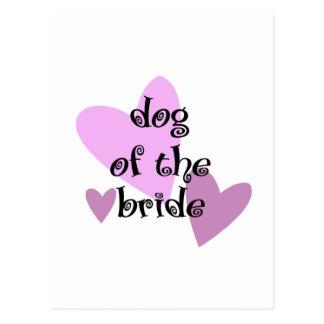 Dog of the Bride Postcard