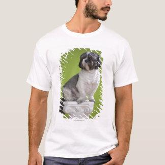 Dog on a column T-Shirt