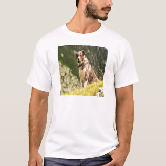 Dog On A Hill T-Shirt