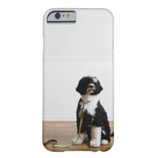 dog on a leash barely there iPhone 6 case