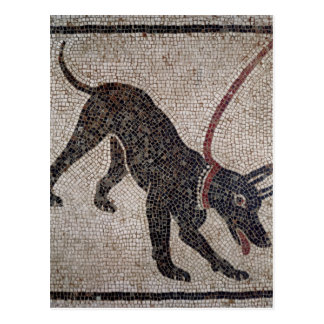 Dog on a leash, from Pompeii Postcard