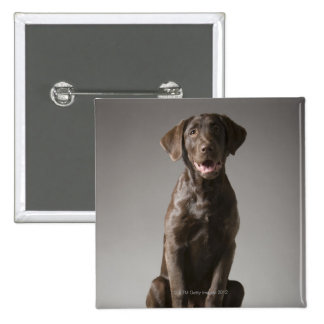 dog on a pedestal 2 inch square button