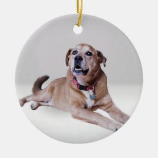 Dog on an ornament