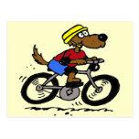 Dog On Bike Post Card