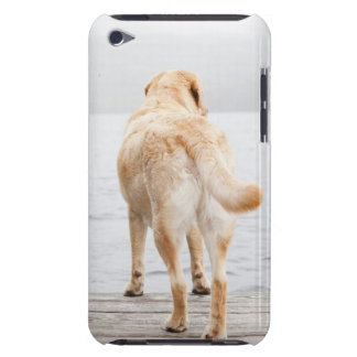 Dog on dock iPod touch case