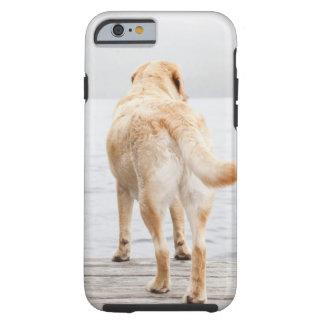 Dog on dock tough iPhone 6 case