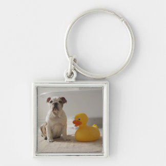 Dog on mat with plastic duck keychain