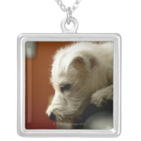 Dog on office chair silver plated necklace