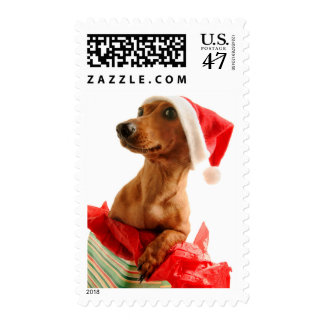 Dog on present with Santa hat Postage