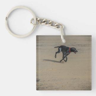 Dog On The Beach Keychain/Keyring Keychain