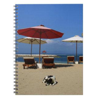 Dog on the beach notebook