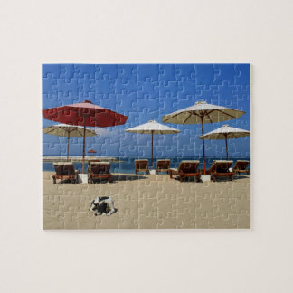 Dog on the beach puzzle