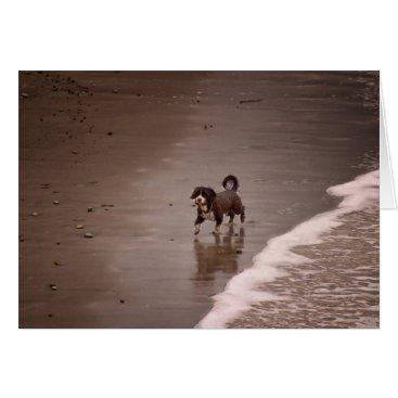 Beach Themed Dog on the Beach Sepia Toned Blank Card
