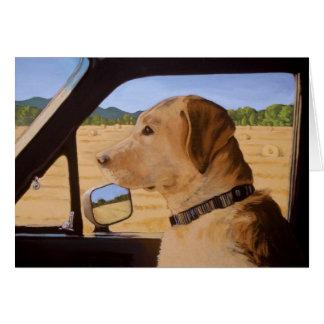 Dog on the Go Card