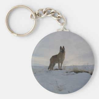 Dog On The Hill Key Chains