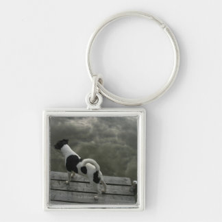 Dog on Top of Roof Keychain