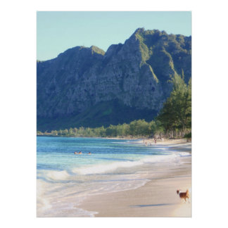 Dog on Waimanalo Beach Poster