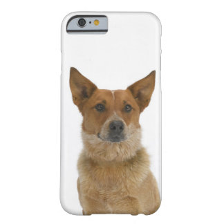 Dog on White 01 Barely There iPhone 6 Case