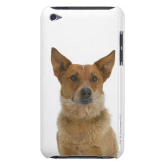 Dog on White 01 iPod Case-Mate Case