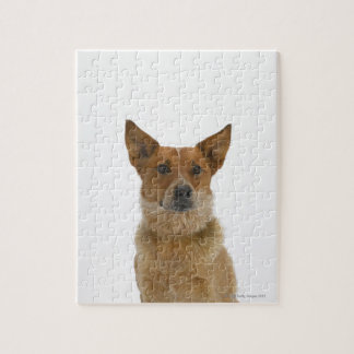 Dog on White 01 Jigsaw Puzzle