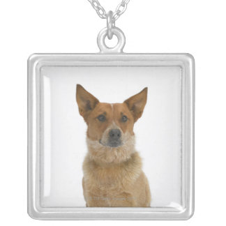 Dog on White 01 Silver Plated Necklace