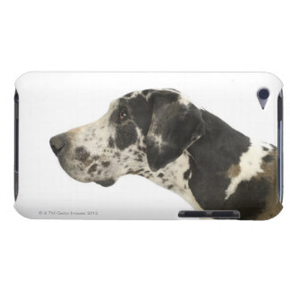 Dog on White 11 Barely There iPod Cover