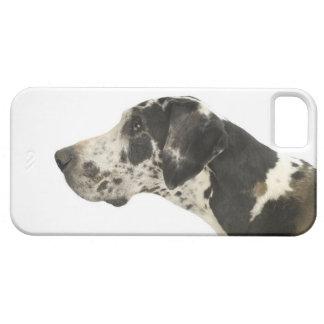 Dog on White 11 iPhone SE/5/5s Case