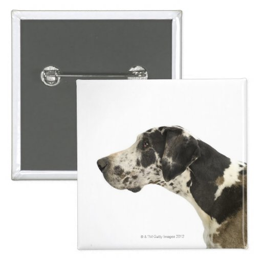 Dog on White 11 Pinback Button