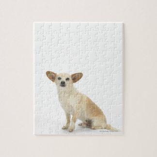 Dog on White 13 Jigsaw Puzzle