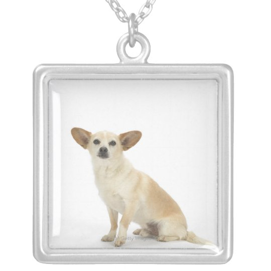 Dog on White 13 Silver Plated Necklace