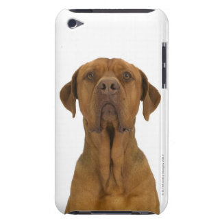 Dog on White 38 iPod Touch Case-Mate Case