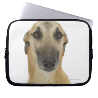 Dog on White 41 Computer Sleeve